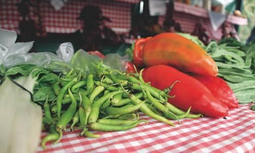 Loiuko Gastronomia, Abeltzaintza eta Artisautza azoka domekan egingo da